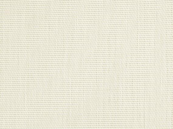 White 2x1